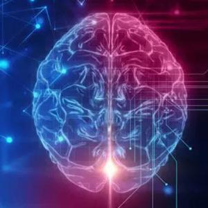 O que acontece com o cérebro depois da morte?