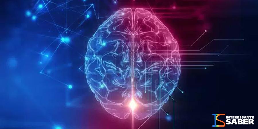cérebro-depois-da-morte