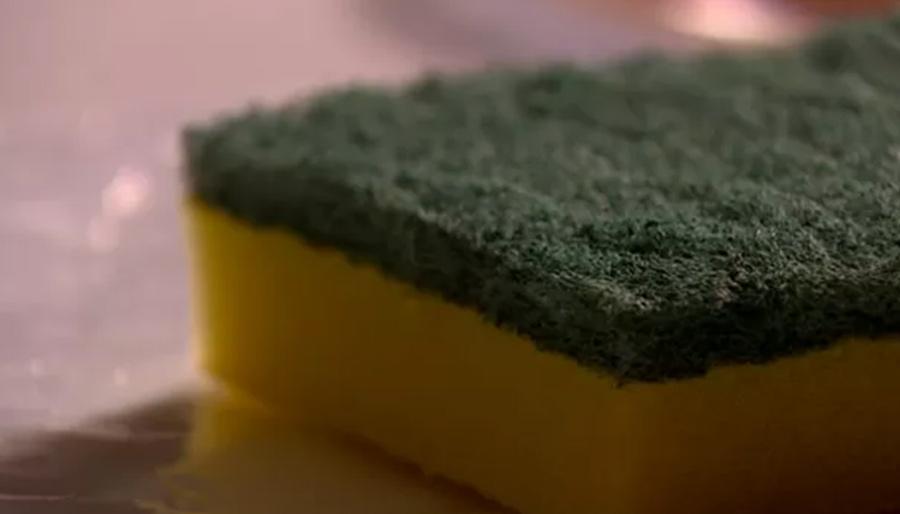 680 milhões de fungos estão na sua esponja de lavar louça