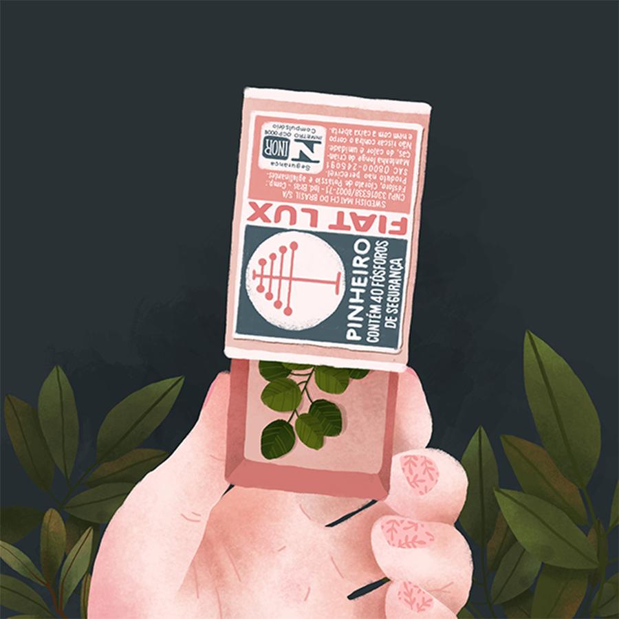 Priscila-Barbosa-ilustração-sobre-objetos-e-plantas