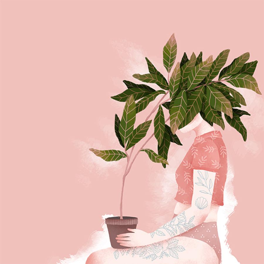 ilustração-aroma-e-frescor