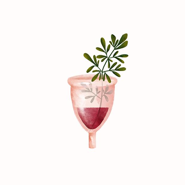 ilustração-vinho-e-plantas