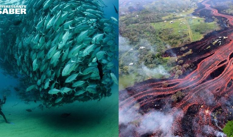 Imagens impressionantes provam que a natureza é mais forte que os homens