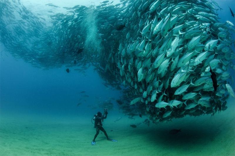 Você teria coragem de ficar ali?
