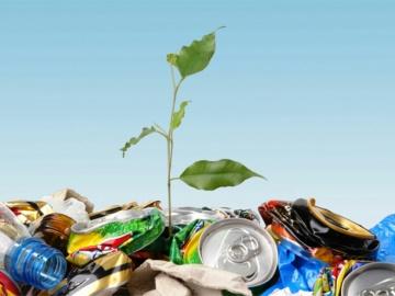 lixo no meio ambiente