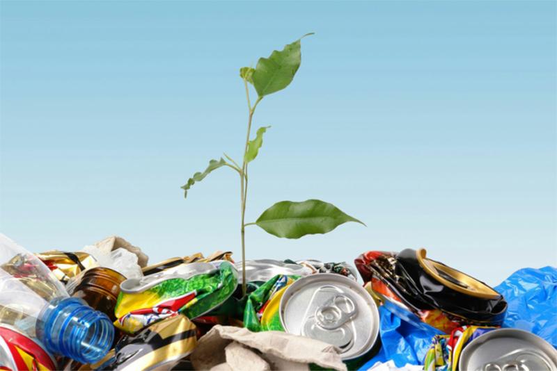 Quanto tempo o lixo demora para se decompor?