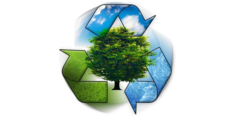 Brasileiro sabe pouco sobre coleta seletiva e reciclagem