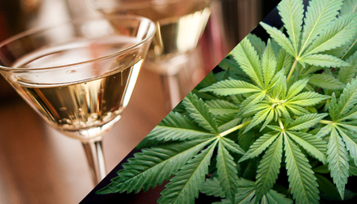 Álcool ou maconha? Qual o mais prejudicial?