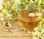 Quais as vantagens para a saúde de se beber chá de camomila?