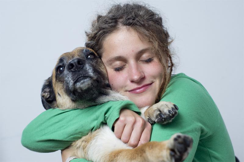 Por que meu cachorro não gosta de abraços?