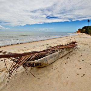 Descubra com quantos paus se faz uma canoa