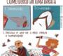 Quadrinhos para quem tem medo de baratas e outras situações