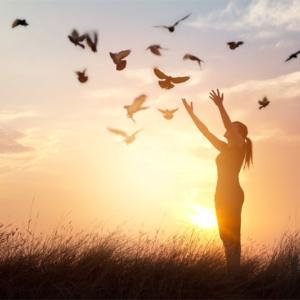 Frases de pensadores que irão trazer paz para sua vida