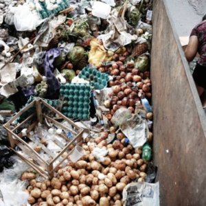 Cada brasileiro joga fora mais de 40 quilos de comida por ano