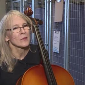 Conheça a mulher que leva música para animais abandonados