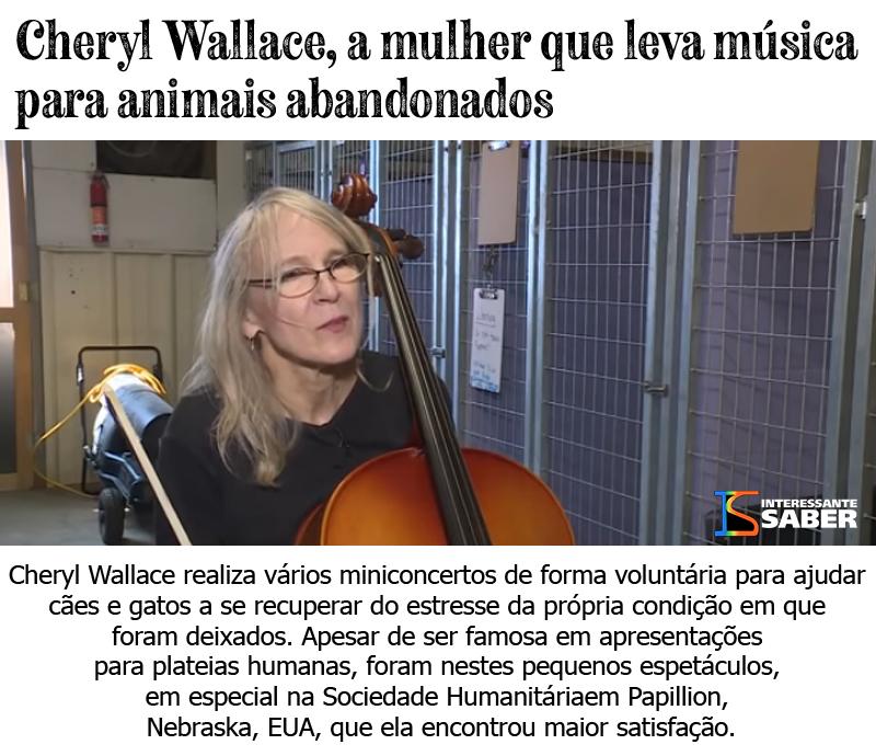levando música para animais abandonados