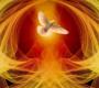 A ação do Espírito Santo na nossa vida e outras inspirações