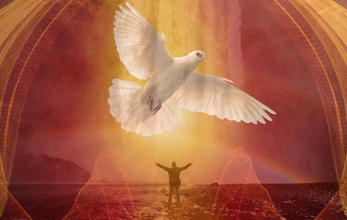 Seja uma pessoa cheia do Espírito Santo e leve a graça de Deus por onde for