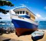 Praia do forte:  onde paisagens paradisíacas e história caminham juntas