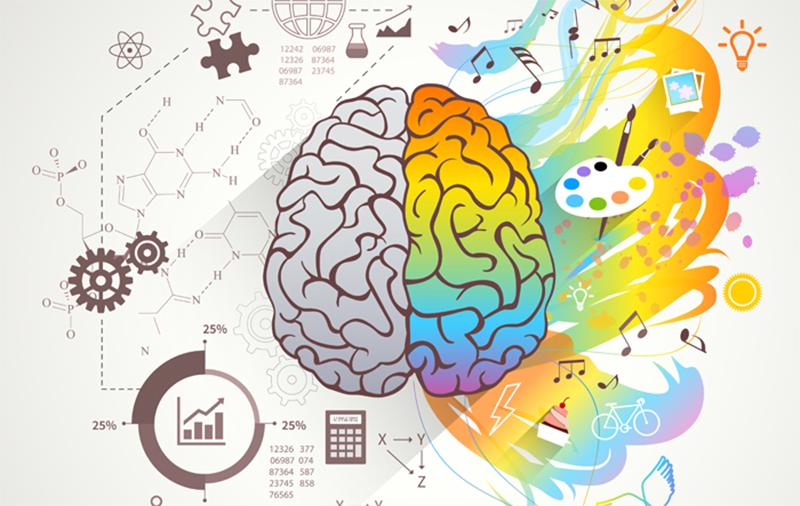 Entenda o que são os gatilhos mentais e como eles podem transformar o seu negócio