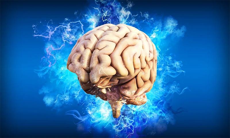 Entenda como o seu cérebro busca o prazer e porque você precisa administrar isso