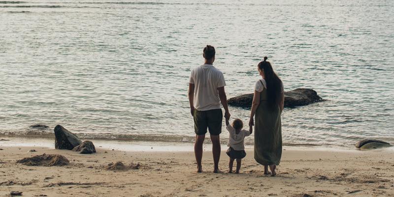 A ideologia de gênero e a luta pela destruição da família